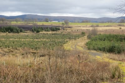 Read: ARC welcomes peat extraction refusal