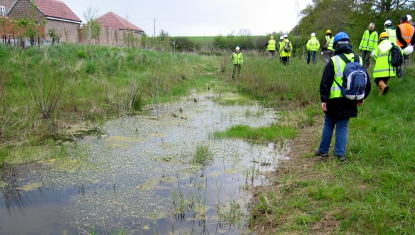 Sustainable Drainage Schemes (SuDS)