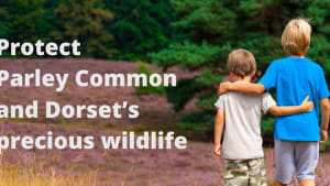 Protect Parley Common and Dorset's precious wildlife