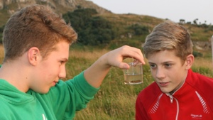 Great Crested Newt Detectives